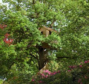 La Cabane Perchee - cabane fleurie - Baumhaus