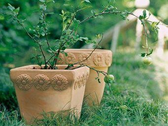 DEROMA France - lucca - Garten Blumentopf