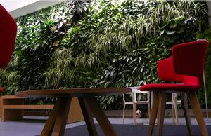 VERDE PROFILO -  - Bepflanzte Wand