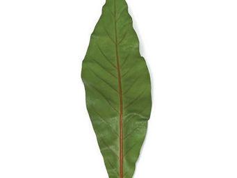 Artico en Casa.com - hoja tacca - Blätter