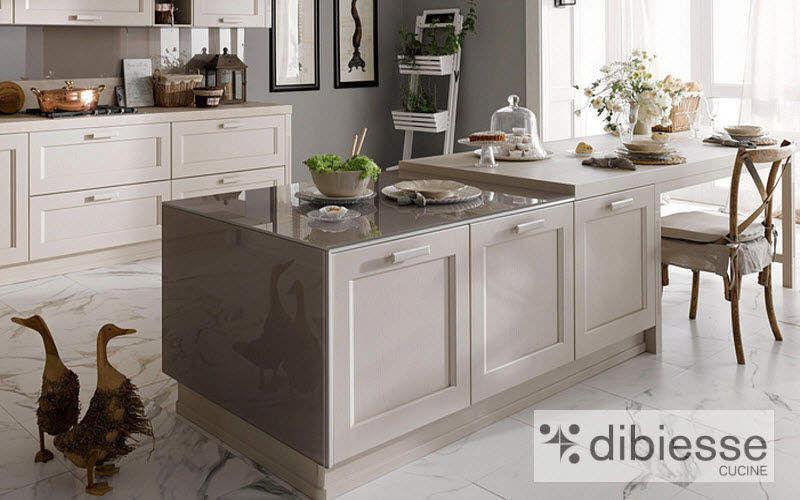 DIBIESSE Islote de cocina equipado Varios equipamiento cocina Equipo de la cocina   |