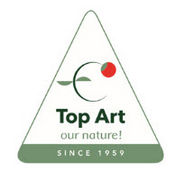 Top Art International
