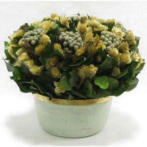 Bougainvillea -  - Composición Floral