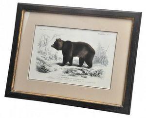 Demeure et Jardin - gravure ours brun - Grabado