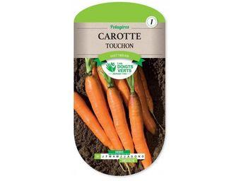 LES DOIGTS VERTS - semence carotte touchon - Semilla