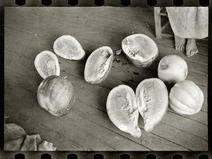 LINEATURE - melons on frank tengle's porch - 1936 - Fotografía