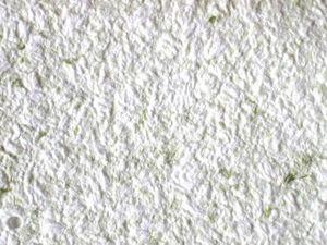 SAJADE JADECOR - janina - Enfoscado Decorativo