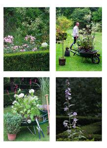 DRAW ME A GARDEN - jardin à la française - Giardino All'inglese