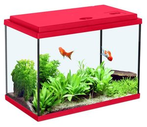 ZOLUX - aquarium enfant rouge cerise 18l - Acquario