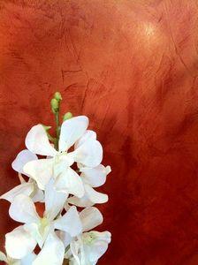 Ombre et lumière - stuc vénitien rouge ciré or - Stucco A Calce